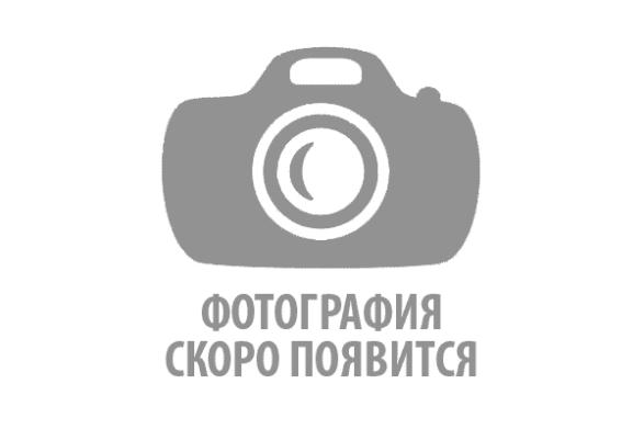 30414П Полоса художественный прокат (6,5 метров)